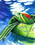 Talking Originals - Happy Turtle by Rene Capone