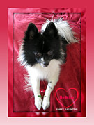 Cute Puppy Pictures Photos - Happy Valentine Day Greetings by John A Shiron