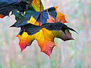 Lightscapes Photos - Harbinger of Autumn by Sean Griffin