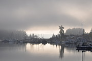 Searcy Prints - Harbor at Dawn 1 Print by Tanya  Searcy