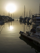 Boats Pyrography Prints - Harbor Sunset Print by Stephen McCluskey