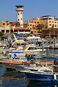 Harbor Waterfront In Cabo San Lucas Print by Roupen  Baker