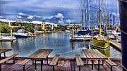 Harbor Dock Prints - Harborside Cafe Print by Douglas Barnard