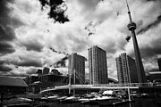 Harbourfront Posters - Harbourfront Marina And Pedestrian Bridge Toronto Skyline Ontario Canada Poster by Joe Fox