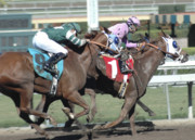 Race Horse Photos - Hard Riders by Clarence Alford