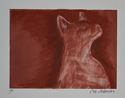 Siamese Cat Print Prints - Hardly Here Print by Cori Solomon