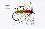 Fly Fishing Mixed Media Prints - Hares Ear Spider Print by James Eugene  Moore