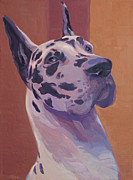 Shawn Shea - Harlequin Great Dane