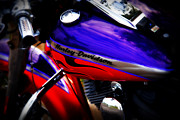 Harley Davidson Photos - Harley Addiction by Susanne Van Hulst
