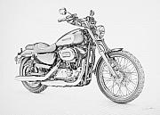 Bicycle Drawings - Harley Davidson 1200 Custom by Regan Peters