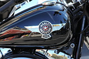 Harley Davidson Photos - Harley-Davidson - 5D19286 by Wingsdomain Art and Photography
