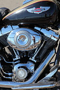 Harley Davidson Photos - Harley-Davidson Motorcycle - 5D19564 by Wingsdomain Art and Photography