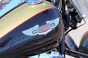Harley Davidson Photos - Harley-Davidson Motorcycle - 5D19565 by Wingsdomain Art and Photography