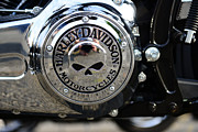 Harley Davidson Photos - Harley Davidson Motorcycles Engine Cover by Paul Ward