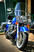 Hdri Prints - Harley in Electric Blue Print by Chris Dutton
