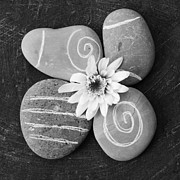 Rocks Art - Harmony and Peace by Linda Woods
