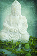 Buddha Metal Prints - Harmony Metal Print by Angela Doelling AD DESIGN Photo and PhotoArt