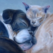 Dog And Cat Posters - Harmony Poster by Donna Tuten