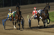Horses In Harness Prints - Harness Racing 10 Print by Bob Christopher