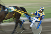 Horses In Harness Prints - Harness Racing 2 Print by Bob Christopher