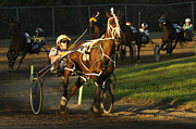 Horses In Harness Prints - Harness Racing 4 Print by Bob Christopher