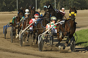 Horses In Harness Prints - Harness Racing 9 Print by Bob Christopher