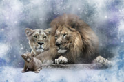 Lioness Framed Prints - Harold Helena and the Heir Framed Print by Julie L Hoddinott