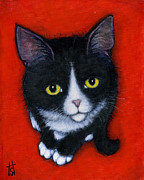 Tuxedo Cat Painting Framed Prints - Harry Kitten Framed Print by Heidi Shaulis