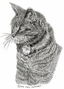 Cats Prints Drawings Prints - Harry R.i.p. Print by Jack Pumphrey