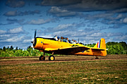 War Bird Framed Prints - Harvard Taxiing Framed Print by Geoff Evans