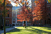 Red School House Framed Prints - Harvard Yard Lehman Hall in Fall Framed Print by Jannis Werner