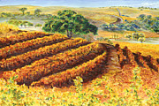 Winery Paintings - Harvest at Penman Springs by Johnny Butler