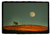 Moon Pyrography - Harvest Moon Calabasas by Karl Preston