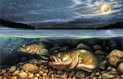 Moon Painting Prints - Harvest Moon Walleye 1 Print by JQ Licensing