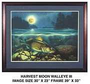 Jon Q Wright Originals - Harvest Moon Walleye 3 by JQ Licensing