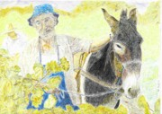Vineyard Drawings - Harvest by Sal Lomick