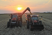 Corn Picker Posters - Harvest Sunset Poster by Jim Ferrier
