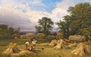 Farm Fields Painting Framed Prints - Harvest Time Framed Print by GV Cole