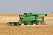 John Deere Photos - Harvest Time by Lauri Novak