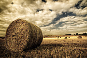 Haybale Photo Prints - Harvest Time Print by Rick Parrott