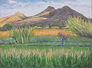 Mexican Landscapes Prints - Harvesting in Yagul Print by Judith Zur