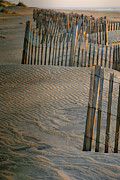 Rodanthe Prints - Hatteras Dune Fences Print by Steven Ainsworth