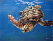 Green Sea Turtle Pastels - Hatties Release by Deb LaFogg-Docherty