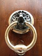 Door Knockers And Handles - Haughty Golden Lion by Edan Chapman