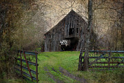 Haunted Houses Prints - Haunted Barn Print by Lisa Moore