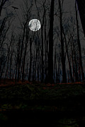 Supermoon Photos - Haunted Moon by Emily Stauring