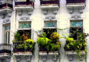 Wrought Iron Framed Prints - Havana Windows Framed Print by Karen Wiles