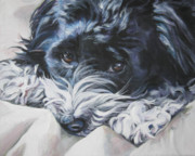 Puppy Paintings - Havanese black and white by Lee Ann Shepard