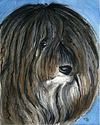 Havanese Paintings - Havanese by Christine Winship