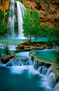 Cascades Prints - Havasu Canyon Print by Inge Johnsson
